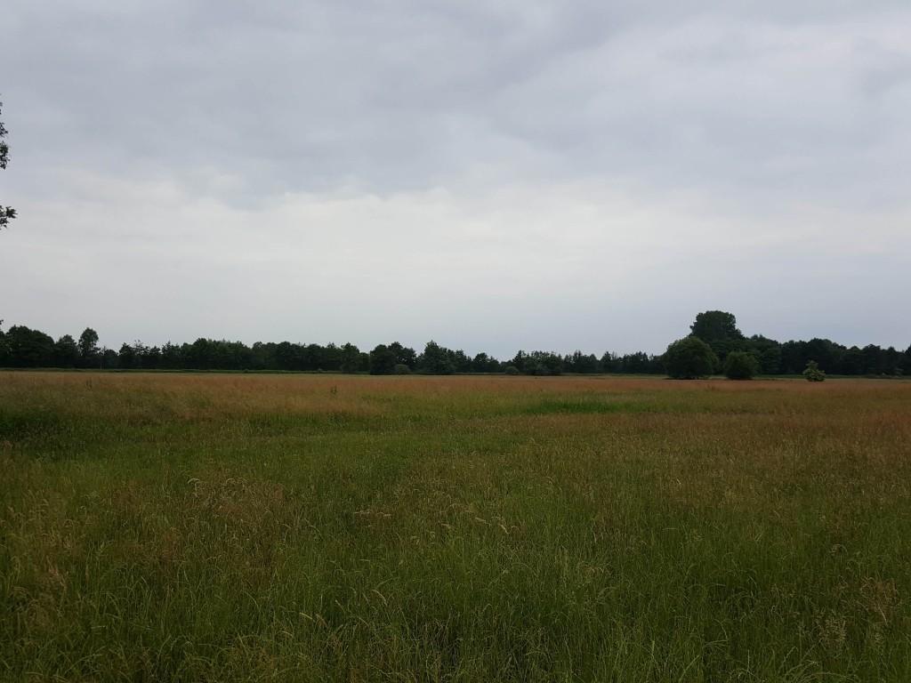 Vogelschutzgebiet, Foto: Margret Lohmann