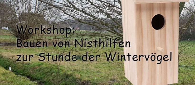 Nisthilfen Workshop