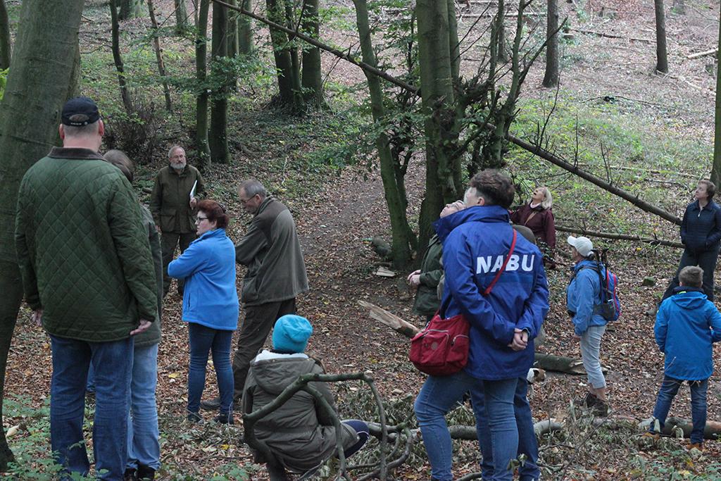 Die TeilnehmerInnen der NABU-Waldexkursion. Fotos: M. Vogt