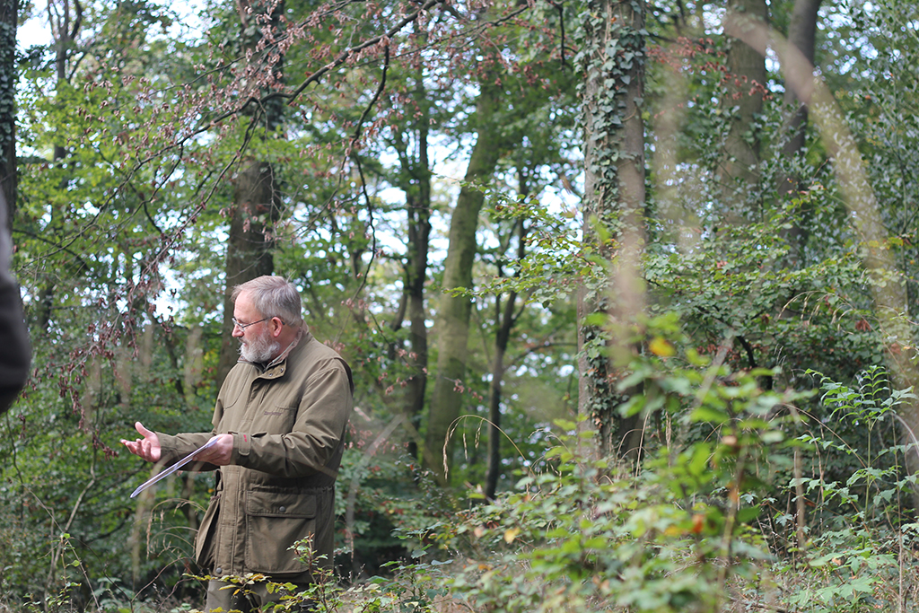 Förster Johannes Otto Lübke von Wald + Holz NRW. Foto: Martina Vogt