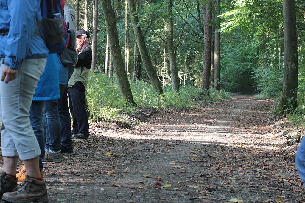 NABU-Exkursion durch das Waldgebiet Storkenberg und zur Kaffeemühle Knüll nach Halle. Foto: M. Vogt